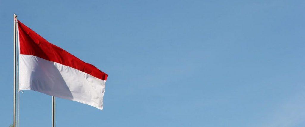 Diverse aziende tecnologiche stanno partecipando a questa nuova potenza di Internet indonesiana