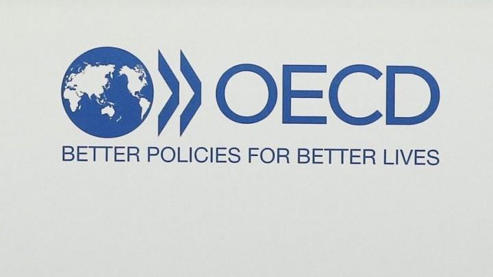 Logo der OECD (dpa / picture alliance / Etienne Laurent)